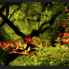Screen-Shot-2013-02-22-at-6.42.22-PM-210x156