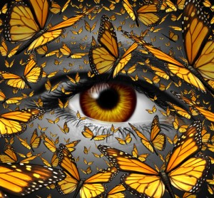 Communication freedom business and lifestyle concept with a close up of human eye and a group of monarch butterflies flying as a creative metaphor for the liberty of imagination expression and innovative vision.