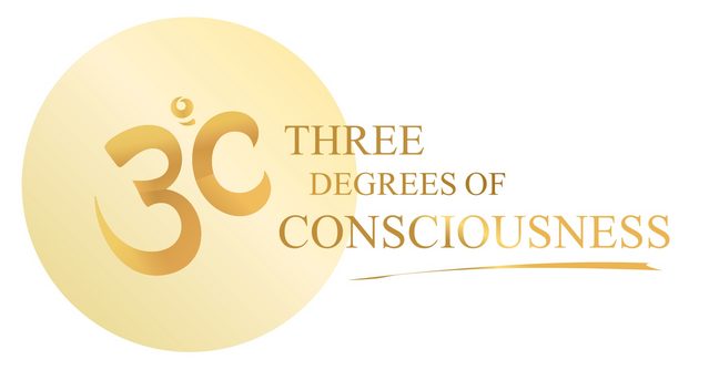 3 Degrees of Consciousness